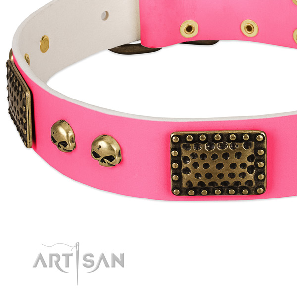 Corrosion resistant adornments on genuine leather dog collar for your four-legged friend