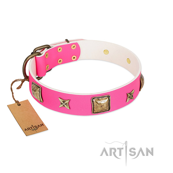 Full grain leather dog collar of gentle to touch material with extraordinary embellishments