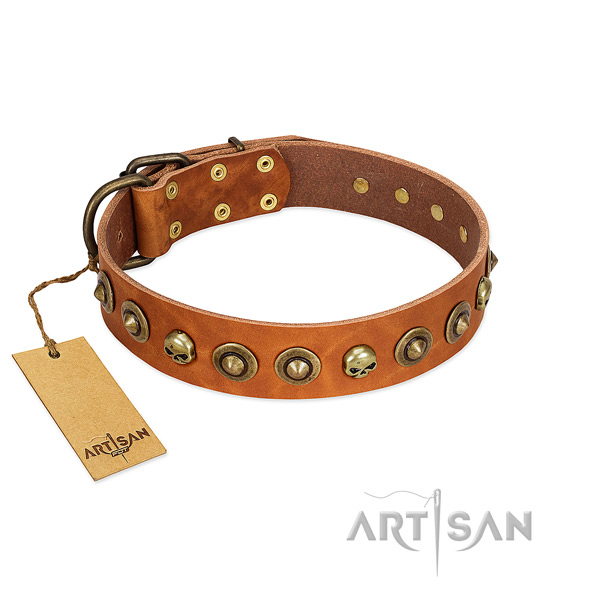 Full grain leather collar with stylish design studs for your dog