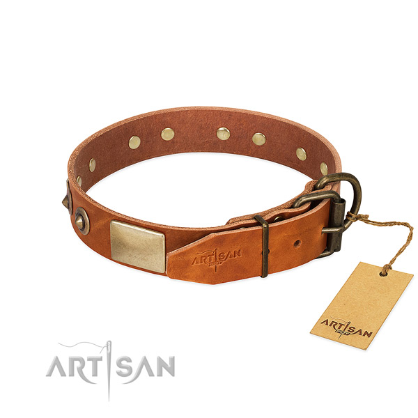 Rust-proof embellishments on stylish walking dog collar