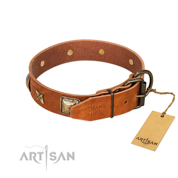 Genuine leather dog collar with durable hardware and adornments