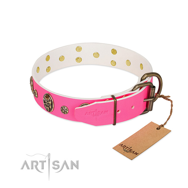 Reliable fittings on natural leather collar for everyday walking your four-legged friend