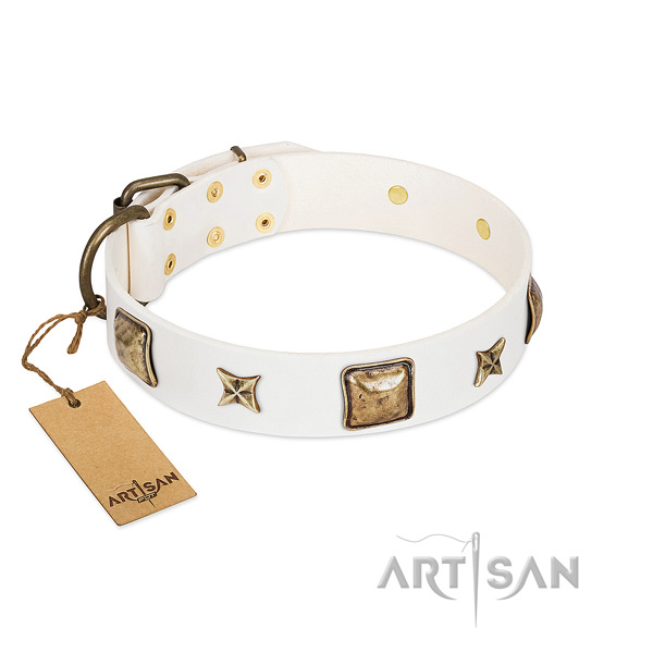 Trendy genuine leather collar for your canine