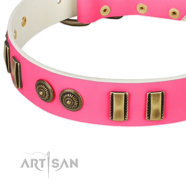 Corrosion resistant decorations on leather dog collar for your dog