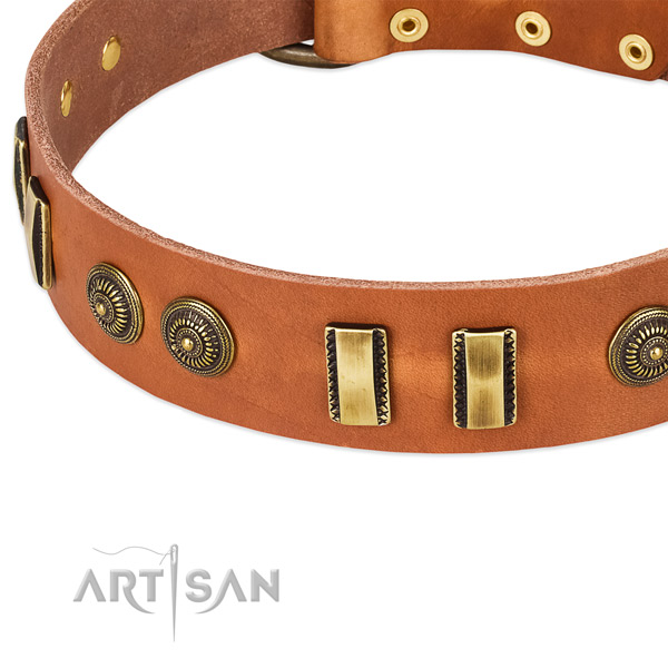 Corrosion resistant fittings on leather dog collar for your four-legged friend