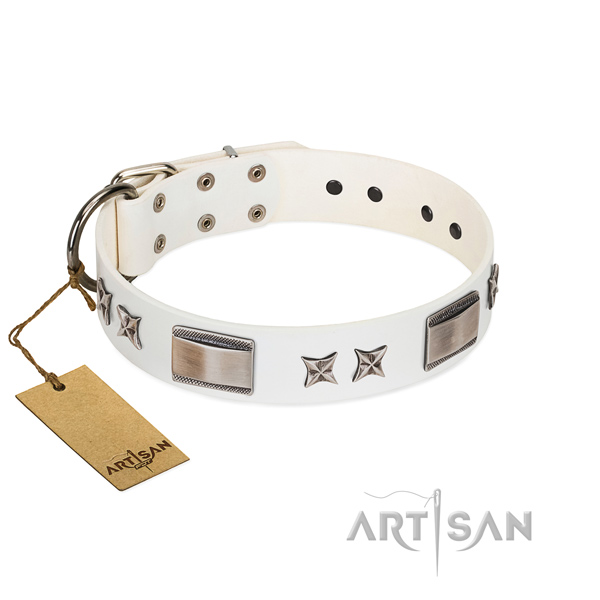 Unusual dog collar of full grain natural leather
