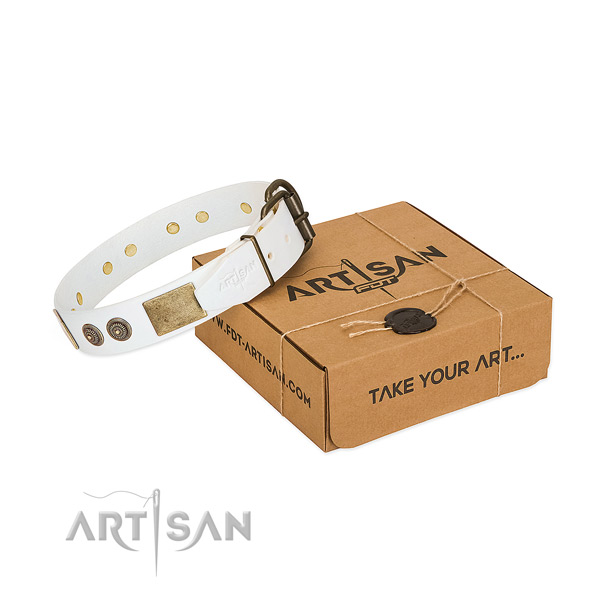 Strong hardware on full grain natural leather dog collar for everyday walking