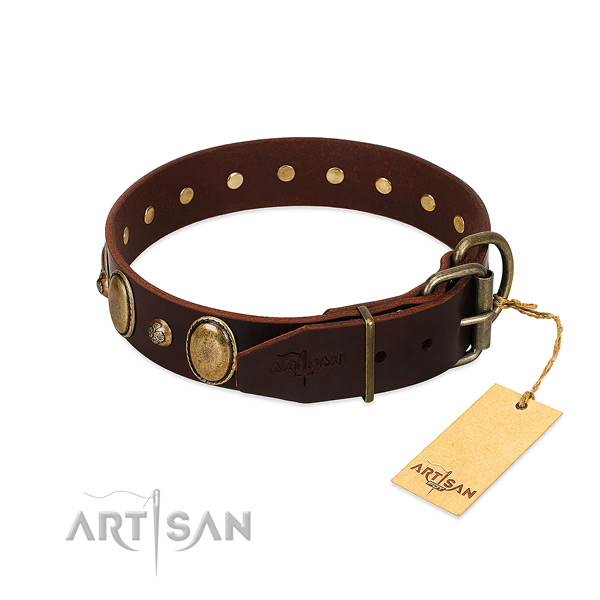 Strong traditional buckle on leather collar for walking your four-legged friend