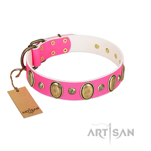 Genuine leather dog collar of top notch material with extraordinary studs