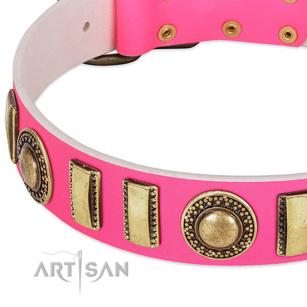 Top rate full grain natural leather dog collar for your attractive pet