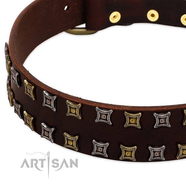 Quality leather dog collar for your impressive doggie