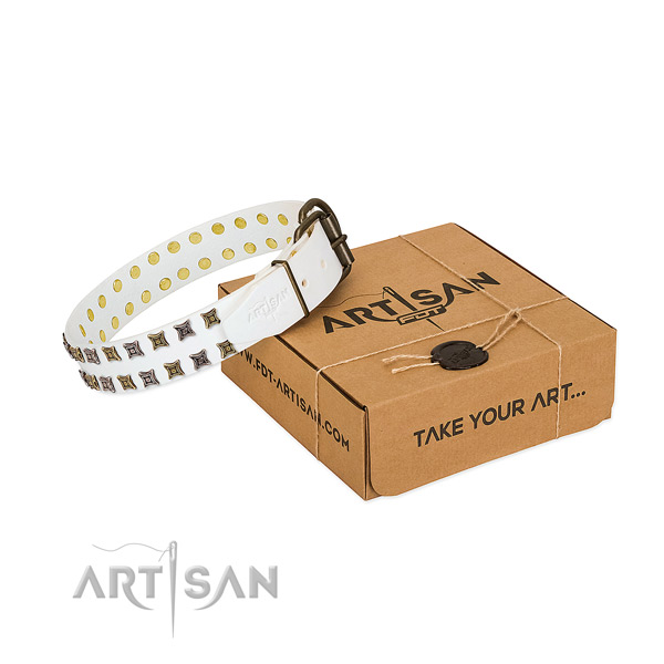 Quality natural leather dog collar crafted for your pet