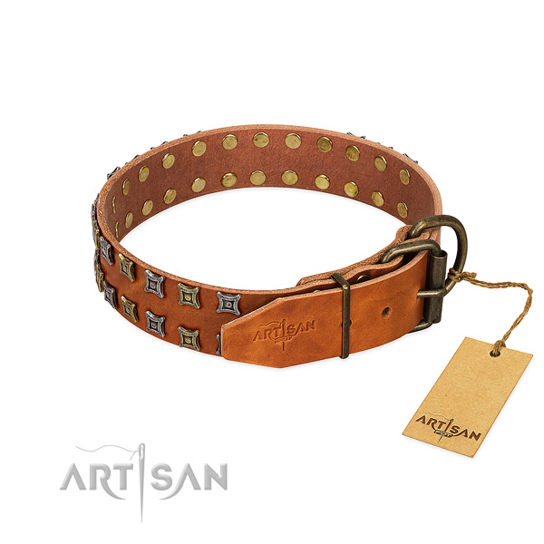 Reliable leather dog collar created for your pet
