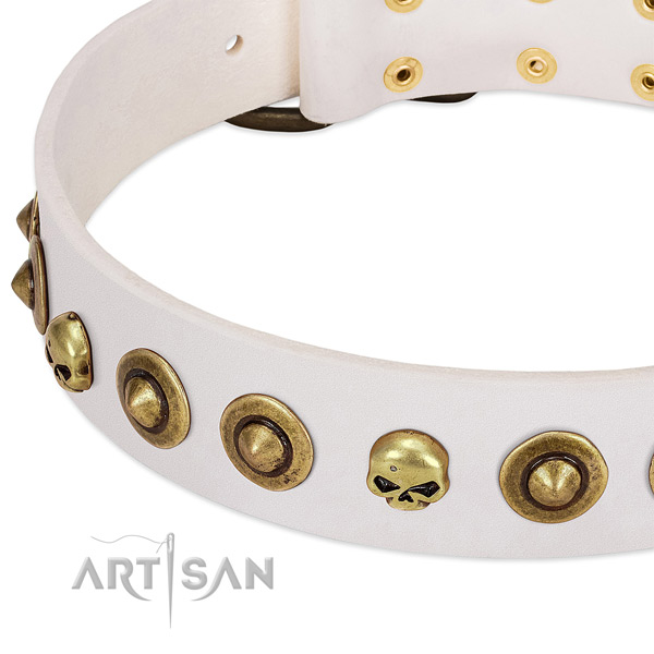 Awesome embellishments on leather collar for your doggie