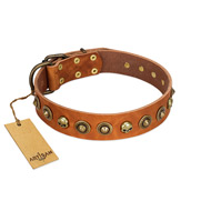 """Prez of the Pack"" FDT Artisan Tan Leather Great Dane Collar with Skulls and Brooches"