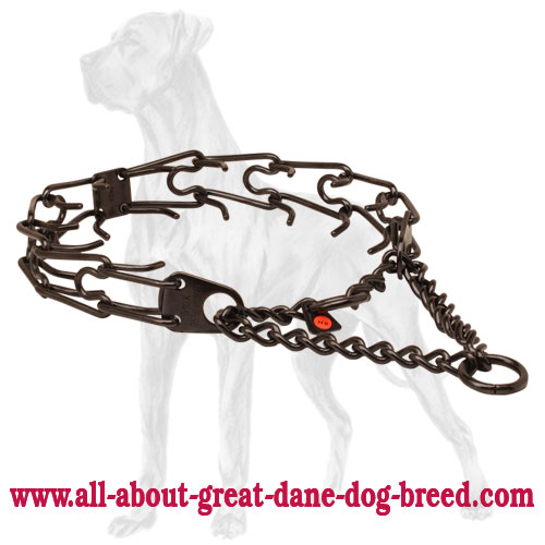 Black stainless steel prong collar for ill behaved pets