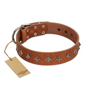 """Broadway"" Handmade FDT Artisan Tan Leather Great Dane Collar with Dotted Pyramids"