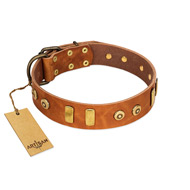"""Egyptian Script"" FDT Artisan Tan Leather Great Dane Collar with Plates and Small Studs"