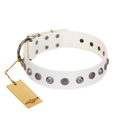 """Solar Energy"" FDT Artisan White Leather Great Dane Collar with Silver-like Studs and Medallions"