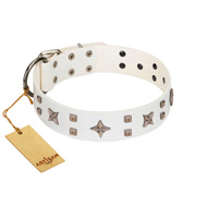 """Starry Heaven"" Designer Handcrafted FDT Artisan White Leather Great Dane Collar with Stars and Studs"