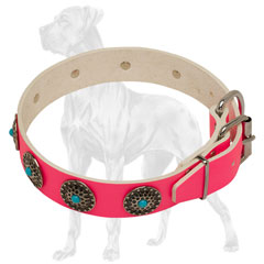 Adjustable Pink Leather Dog Collar