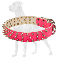 Spiked Pink Leather Dog Collar with Buckle