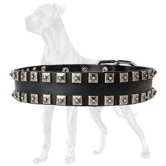 Leather Dog Harness with Studs