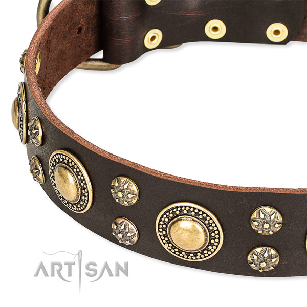 Adjustable leather dog collar with resistant rust-proof fittings