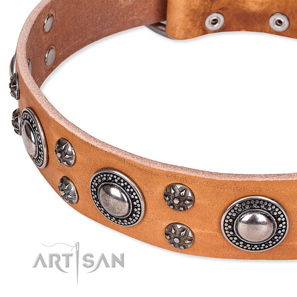 Easy to use leather dog collar with resistant durable set of hardware