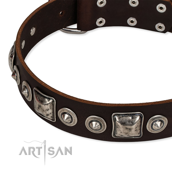 Easy to use leather dog collar with extra strong non-rusting buckle
