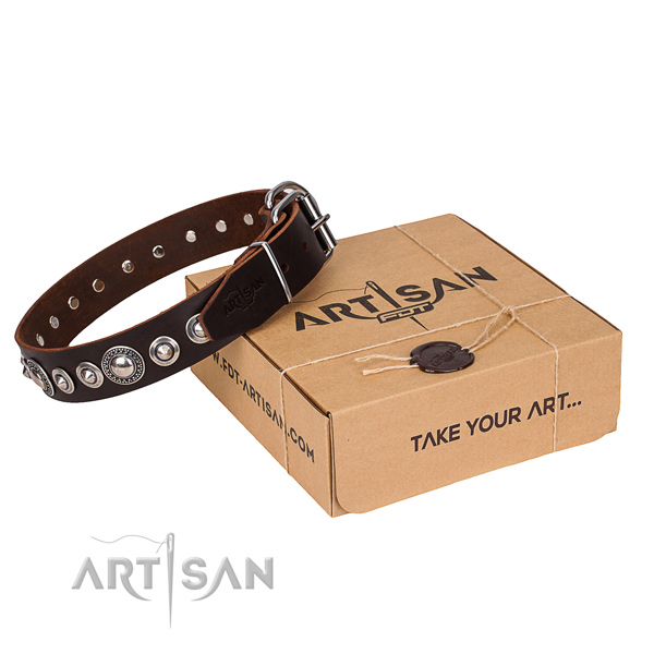 Stylish full grain natural leather dog collar for walking in style