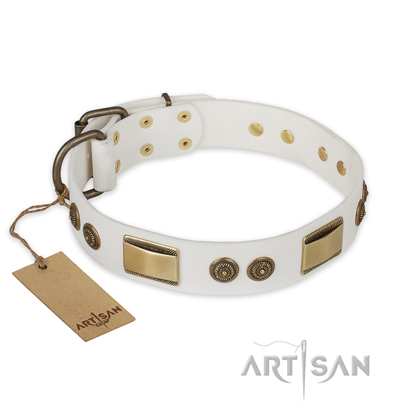 Exquisite design embellishments on full grain natural leather dog collar