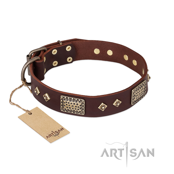 Unique design adornments on leather dog collar