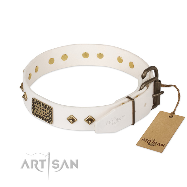 Everyday use full grain leather collar with adornments for your doggie