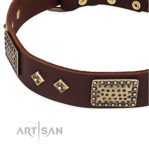 Daily walking leather collar with durable buckle and D-ring