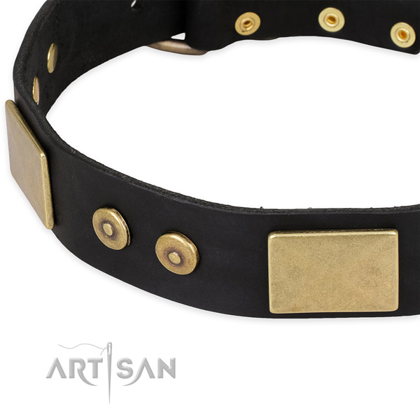 Daily walking full grain genuine leather collar with rust resistant buckle and D-ring