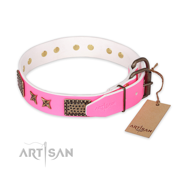 Everyday use genuine leather collar with embellishments for your canine