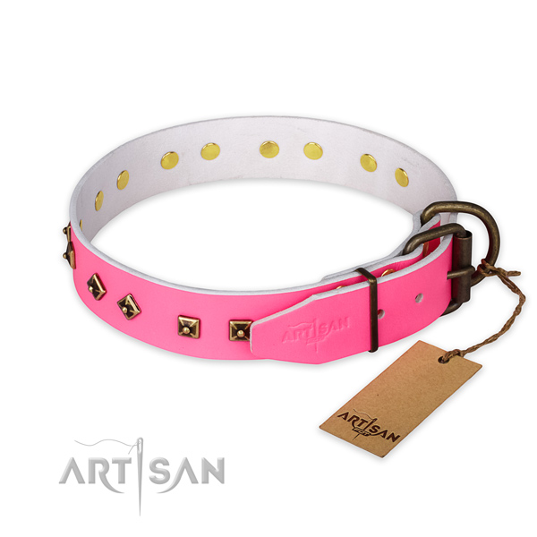 Everyday walking full grain leather collar with studs for your dog