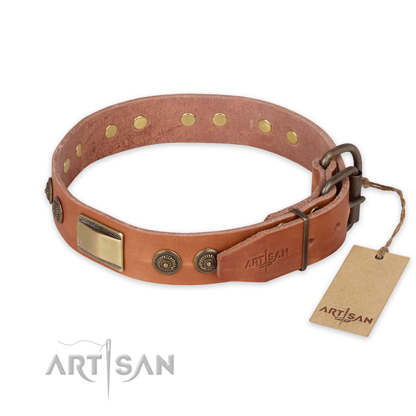 Stunning design adornments on natural genuine leather dog collar