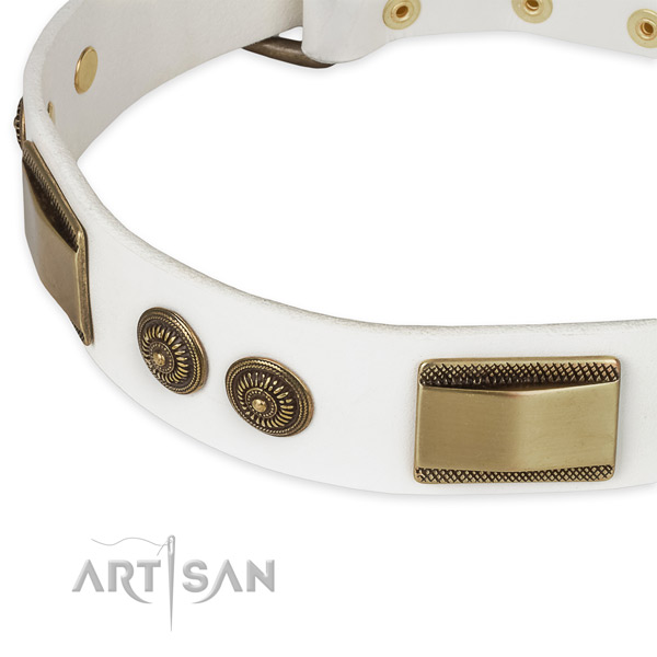 Daily use leather collar with strong buckle and D-ring