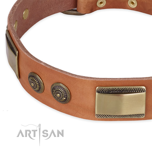 Stylish walking leather collar with rust resistant buckle and D-ring