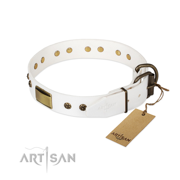 Everyday use leather collar with embellishments for your four-legged friend