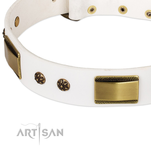Daily walking leather collar with corrosion resistant buckle and D-ring
