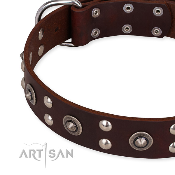Easy to adjust leather dog collar with resistant to tear and wear brass plated hardware