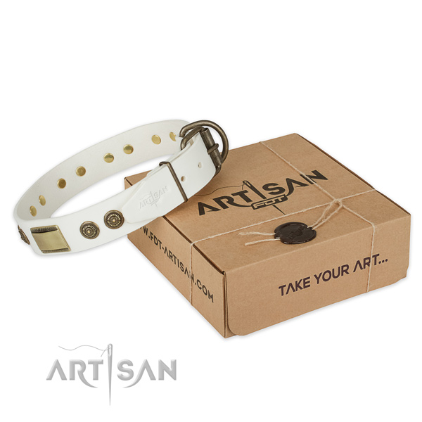 Fashionable full grain natural leather dog collar for daily walking