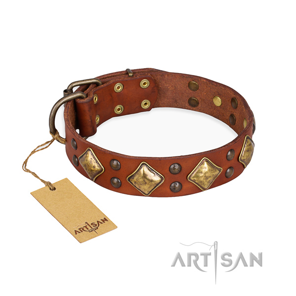 Fashionable design adornments on natural genuine leather dog collar