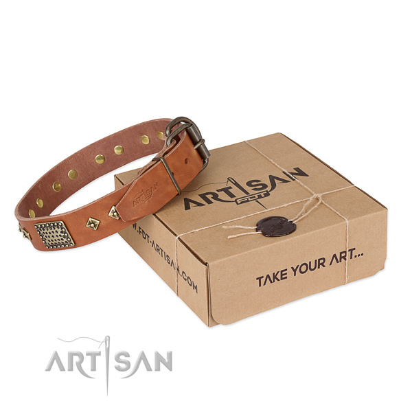 Awesome full grain genuine leather dog collar for walking