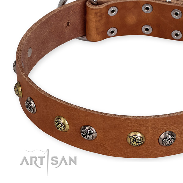 Adjustable leather dog collar with extra sturdy durable fittings