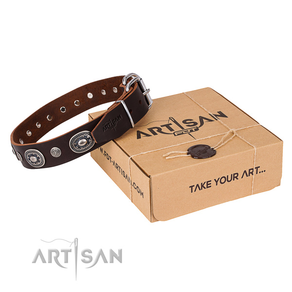 Fashionable leather dog collar for walking in style