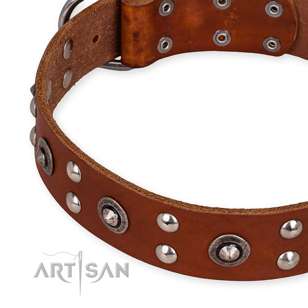 Snugly fitted leather dog collar with resistant to tear and wear brass plated hardware